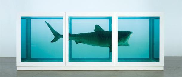 Damien Hirst Shark