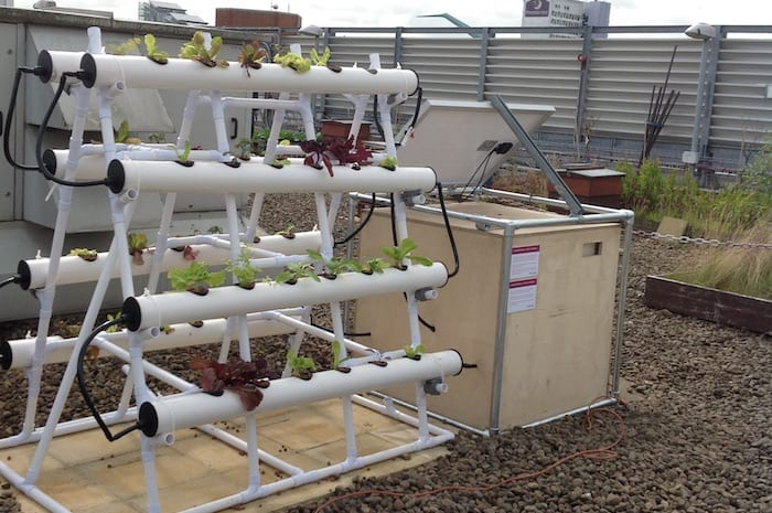 The Printworks' solar powered hydroponics system is a first in Manchester I Love Manchester