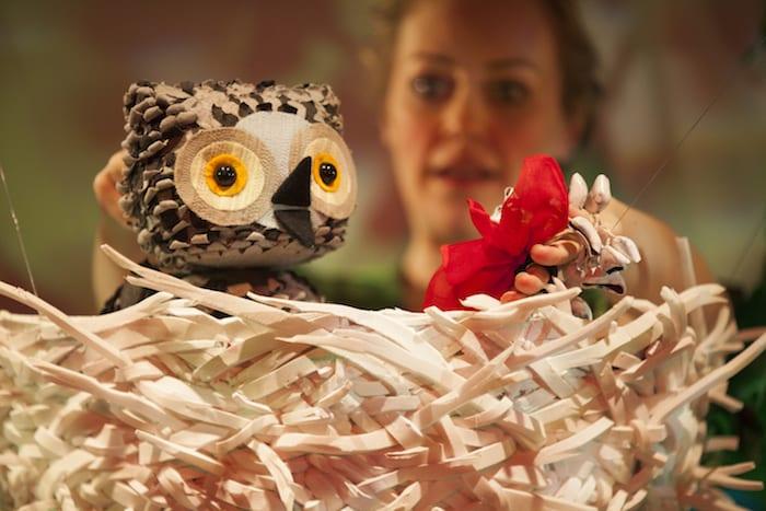 homewow-said-the-owl