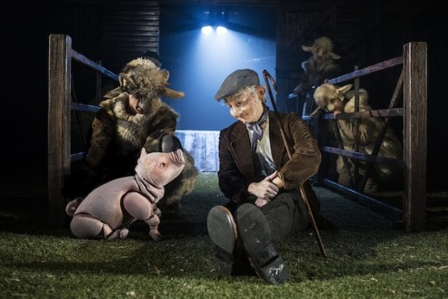 What a Babe! Meet the man behind the world's favourite pig I Love Manchester