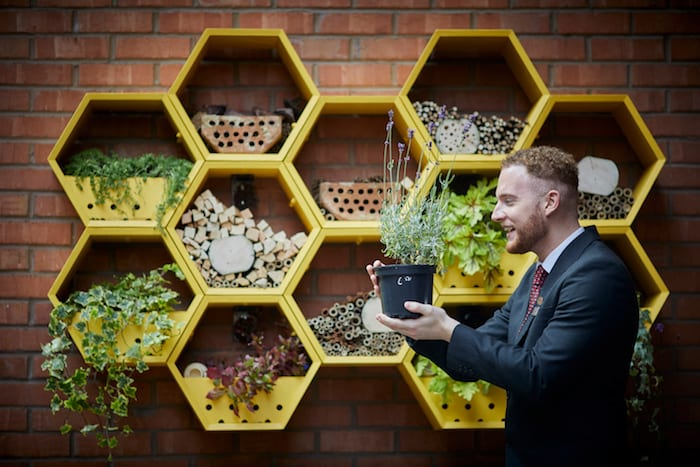Manchester Bee Hotel