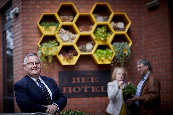 Manchester's first hotel designed exclusively for bees opens for business I Love Manchester
