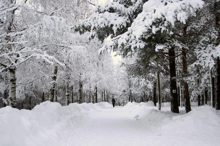 Winter Walk Manchester