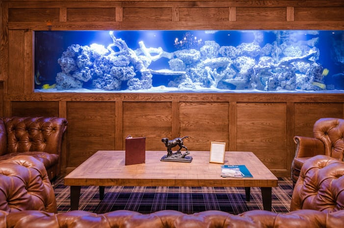 This brand new champagne and cocktail den has a massive marine ecosystem I Love Manchester