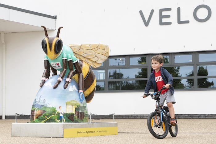Say bye bye to the Bees: see them all one last time bee-fore they buzz off I Love Manchester