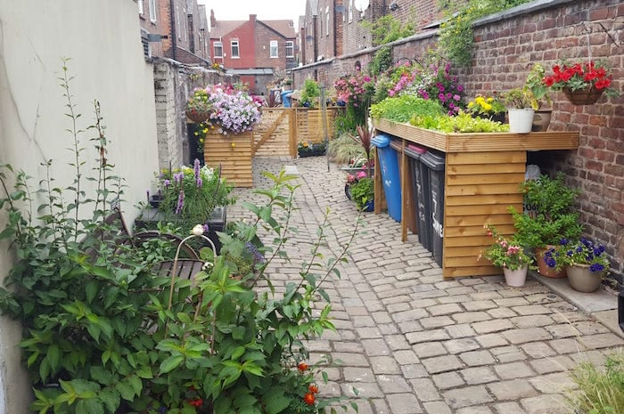 This week's good news: the residents who turned a Salford ginnel into a floral wonderland I Love Manchester