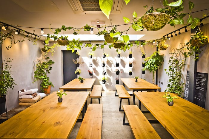 Jay Rayner reviews Chorlton restaurant The Creameries: 'seriously good, thoughtful food' I Love Manchester