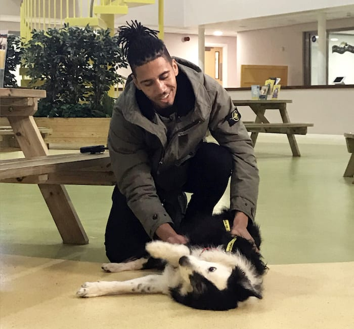 Man United star Chris Smalling meets his puppy namesake at Manchester's Dogs Trust I Love Manchester