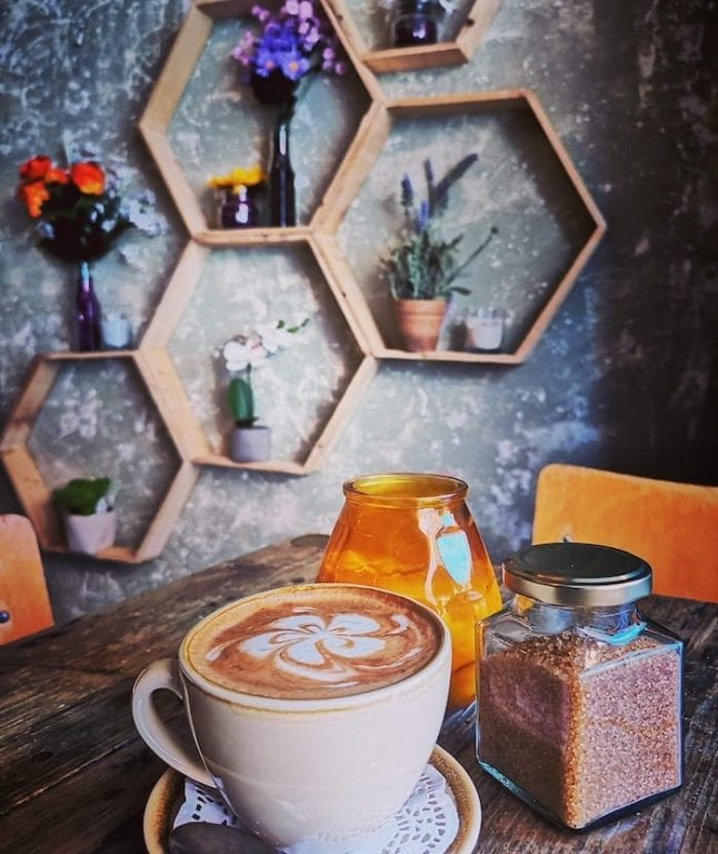 Inside the new garden-themed bar that's an oasis of calm in the NQ I Love Manchester