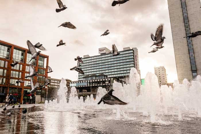 Piccadilly Gardens is set for a makeover as councils trial new high-tech 'hybrid grass' I Love Manchester