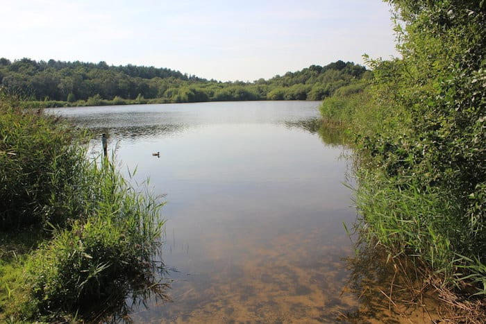 The best wild swimming spots in and around Manchester I Love Manchester