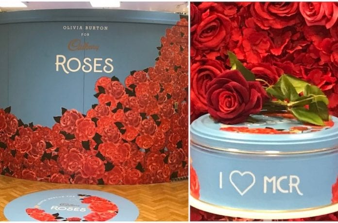 Roses tins at Kendals