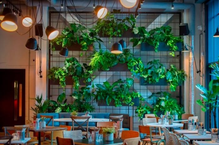 Veganuary might be over, but you can continue the meat-free movement at Counter House I Love Manchester