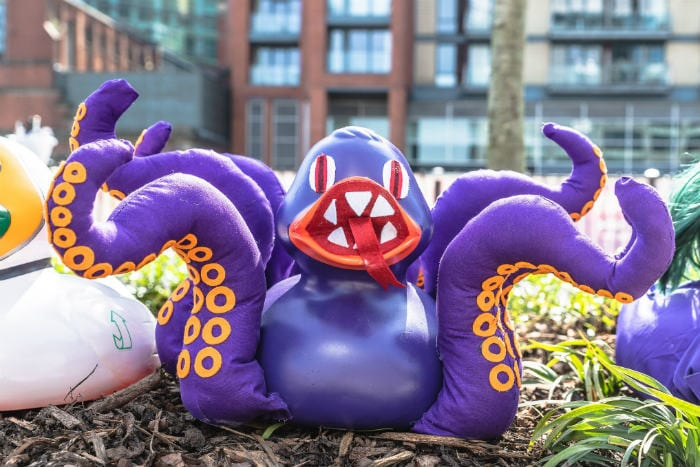 Manchester Duck Race has been cancelled - but you can enjoy the best dressed duck competition from home I Love Manchester